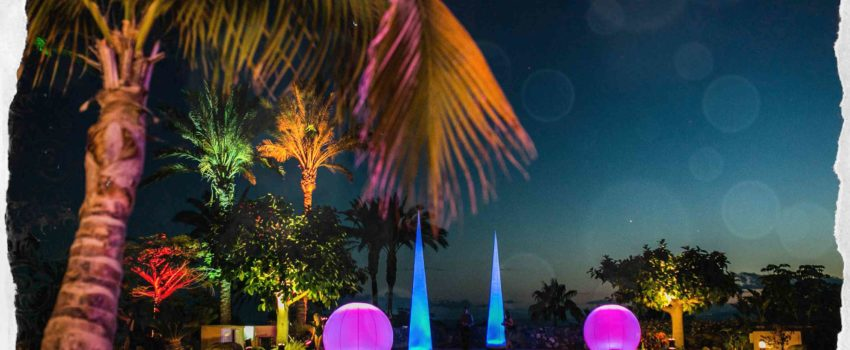 Decoration Pool Lighting palm tree hotel